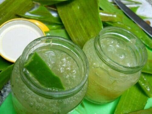 Hvordan lage hjemmelaget aloe vera-gel