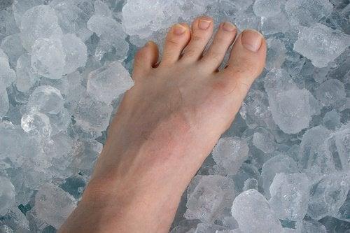 fot i is