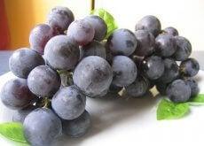 1-druer