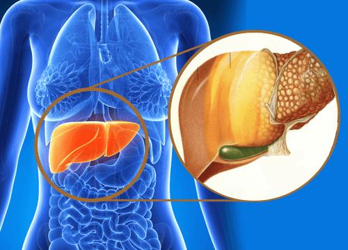 9 tegn på at du har for mye giftstoffer i leveren