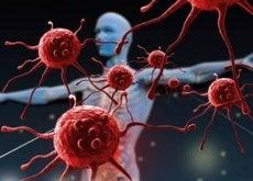 dette-odelegger-immunforsvaret-ditt-hovedbilde