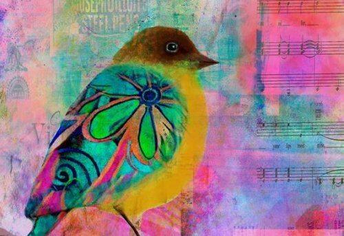 fugl og noter