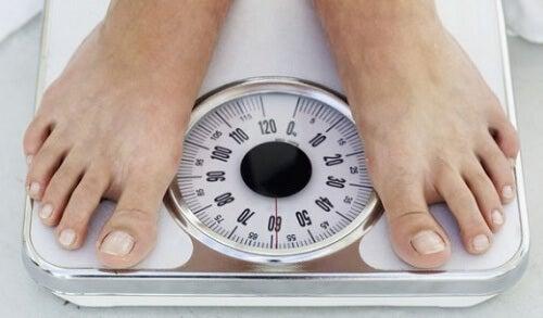 gå-opp-i-vekt