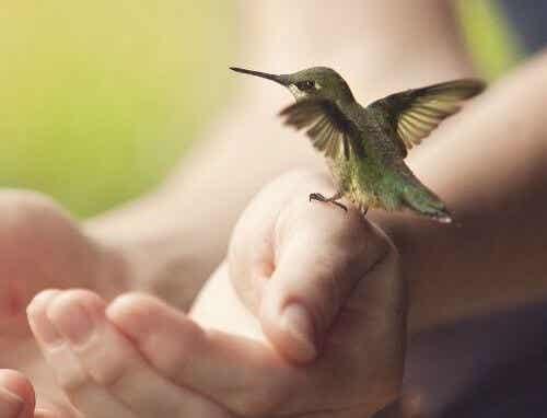 Å rive seg løs er en form for personlig integritet