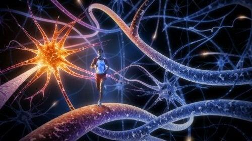 De 8 beste øvelsene for å styrke hjernen