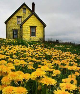 farger kan påvirke humøret vårt