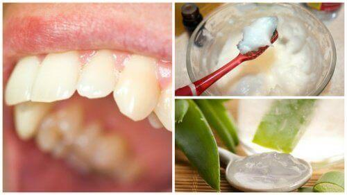 Bekjempe plakk med disse interessante naturlige remediene