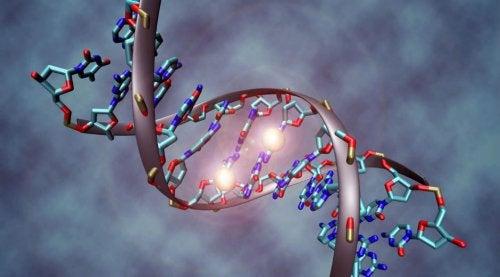 1-kreft-gener-arvelig