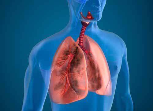 10 naturlige ingredienser for å rense en røykers lunger