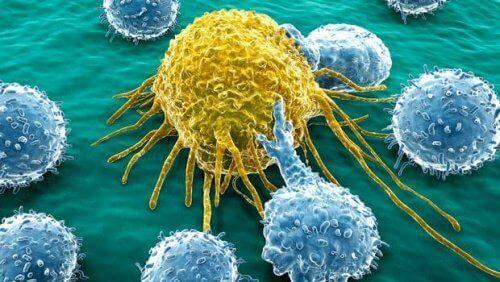 risikoen for å utvikle kreft på grunn av arvelige faktorer er svært lav