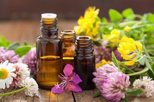5-aromatiske-oljer
