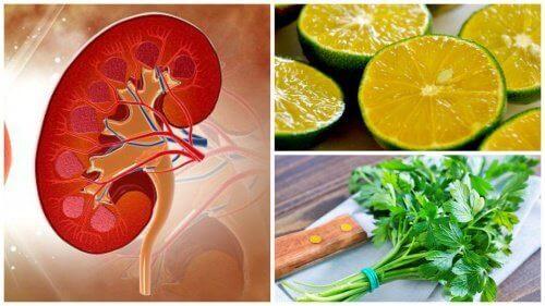 Sitron-  og  persillesirup  for  å  fjerne  nyrestein
