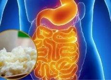slik-gjenoppretter-du-tarmfloraen-pa-en-naturlig-mate-hovedbilde