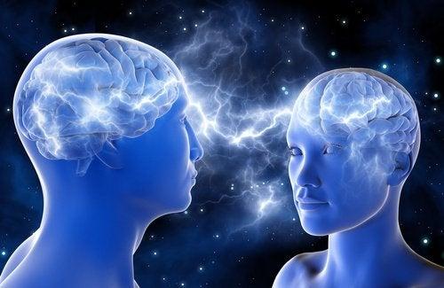 hjerne-