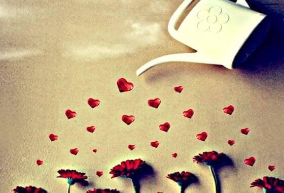hjerter-blomster
