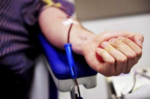 Hvordan bli en benmargsdonor