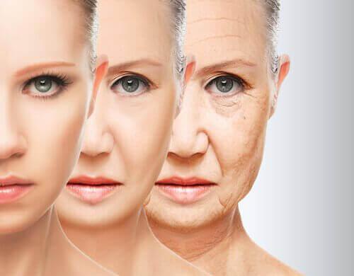 Ung og gammel hud