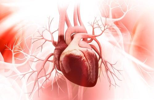5 nøkler for å hindre Broken Heart Syndrome