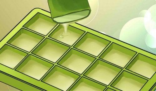 De imponerende fordelene med å fryse aloe vera