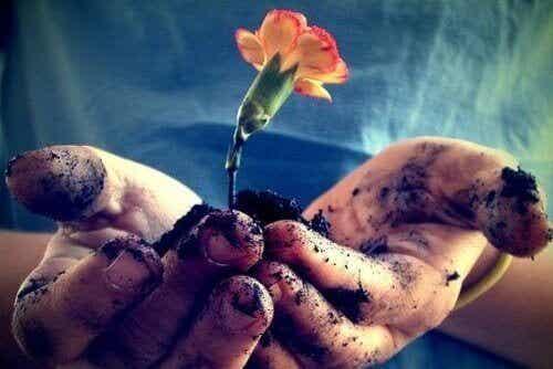 Kjærlighet trenger næring hver dag for å blomstre