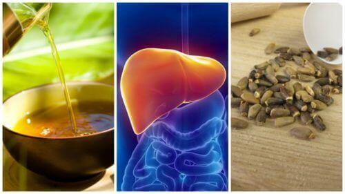 Hvordan bekjempe fettlever med 6 alternative behandlinger