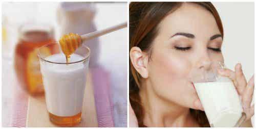 Melk og honning før sengetid har mange fordeler
