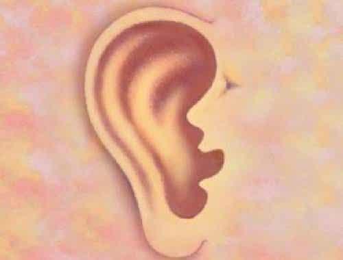 Dette forteller ørene dine om deg og tilstanden din