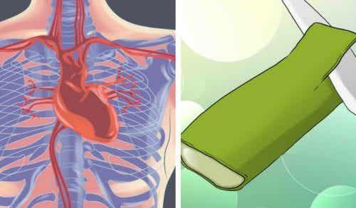 5 kraftige måter aloe vera tar vare på hjertet ditt på