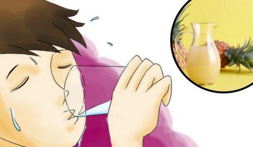 Behandling med ananasskall kan forbedre tarmfloraen din