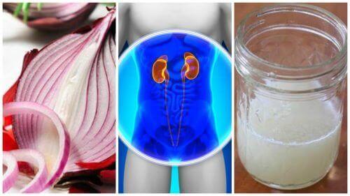 Løkbehandling som bidrar til å rense nyrene dine