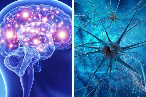 5 vaner som skader sinnet ditt