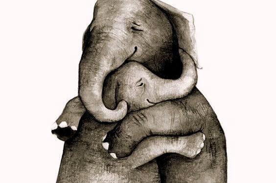 Elefanter klemmer
