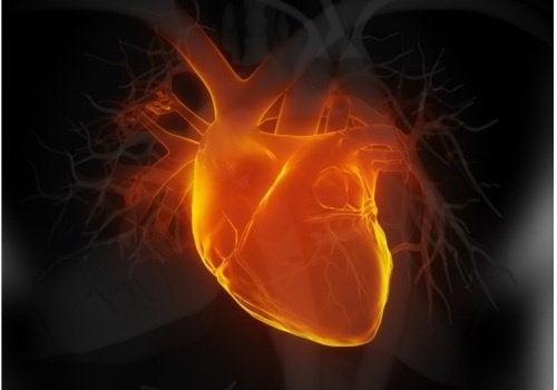 Se etter disse 6 tidlige tegnene på hjertesvikt