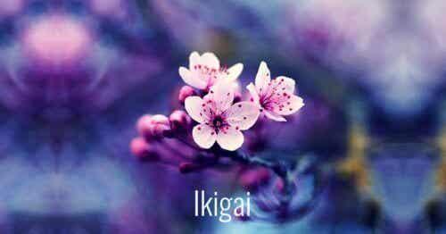 7 vakre japanske ord for å tilrettelegge personlig vekst