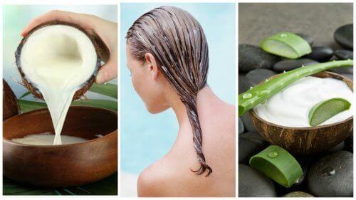 Bekjemp hårtap med denne aloe vera- og kokosmelkbehandlingen