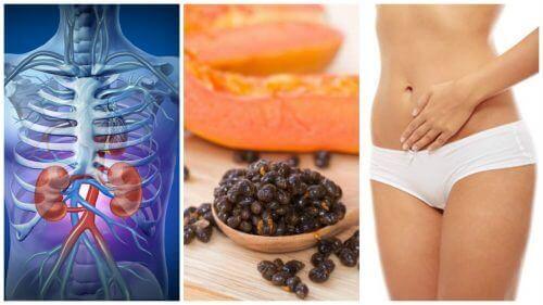 Liker du papaya? Du vil bli overrasket over hva frøene deres kan gjøre for deg