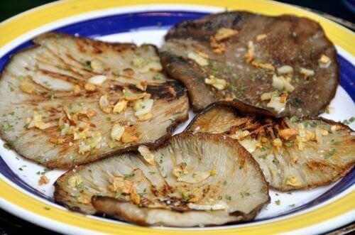 Styrk immunforsvaret ved hjelp av østerssopp