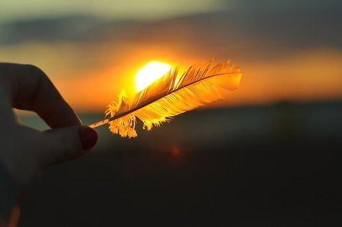 fjær foran solen