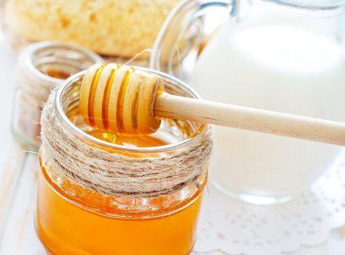 honning og melk