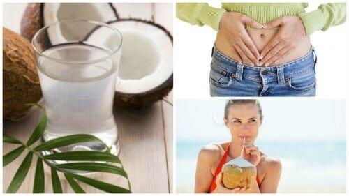 10 fordeler med å drikke kokosvann