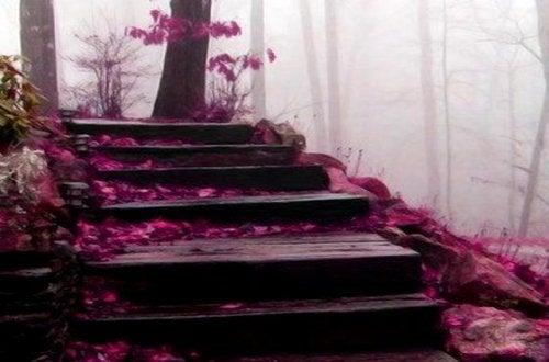 Trinn med rosa blader