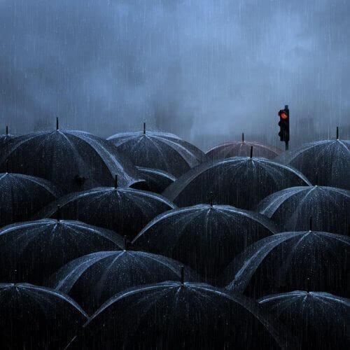 Paraplyer på en regnfull dag
