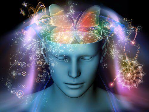 sommerfugl i hjernen