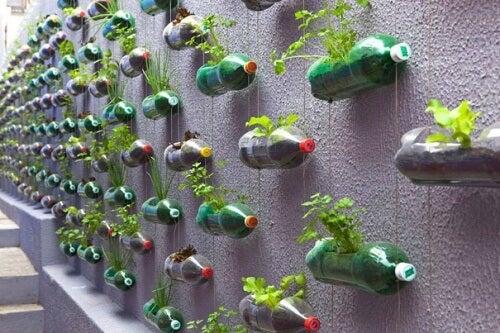 Vertikal hage av resirkulerte plastflasker