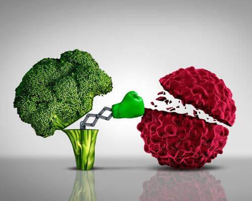 fordeler brokkoli har for helsen din