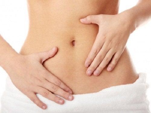 Dette skjer i kroppen når du kombinerer chia med sitron - fordøyelse
