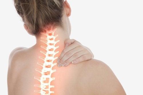 Dette skjer i kroppen når du kombinerer chia med sitron - ryggmarg