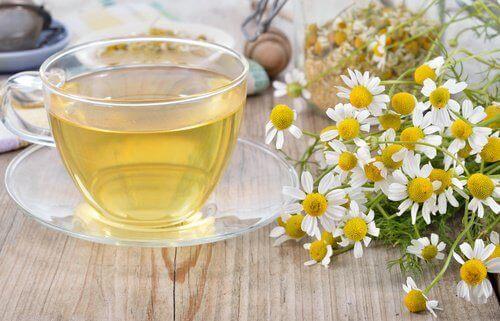 naturlige drikker som hjelper deg med å bekjempe søvnproblemer - kamillete