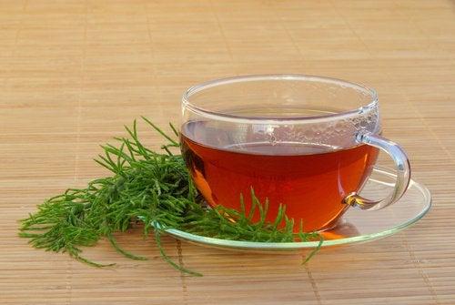 Te av åkersnelle for å bekjempe symptomene på urinveisinfeksjoner