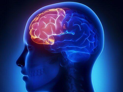 4 øvelser for å opprettholde mental klarhet i alderdommen